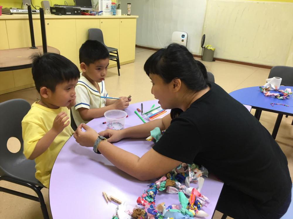 Metta Preschool Autism 2016